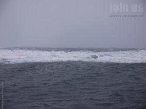 Niedzwiedzia-Svalbard Malgorzata-Pasiecznik 206