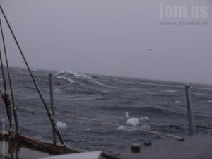 Niedzwiedzia-Svalbard Malgorzata-Pasiecznik 78