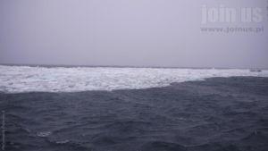 Niedzwiedzia-Svalbard Malgorzata-Pasiecznik 82