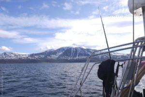 Tromso-Niedzwiedzia Malgorzata-Pasiecznik 86
