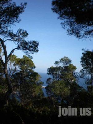 Ibiza-ladem10