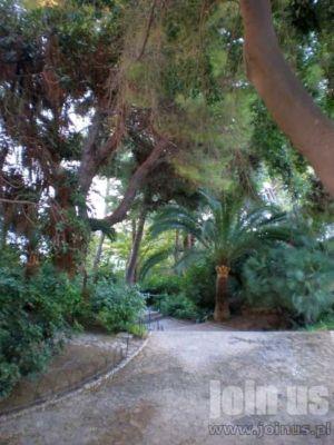 Palma-de-aMllorca17