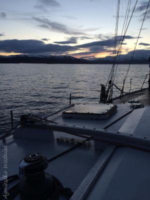 Tromso-Niedzwiedzia Agnieszka-Wozniak 118