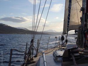 Tromso-Niedzwiedzia Tomasz-Lisiecki 09